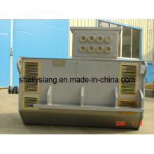 Middle Speed AC Alternator (100-1200kw 1000rpm)