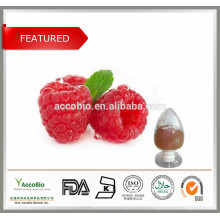 100% polvo de cetona de frambuesa / frambuesa natural