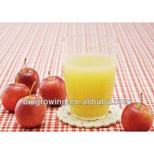 Bebidas Probióticas
