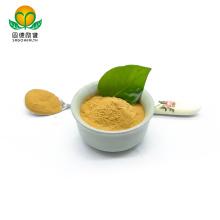 OEM GMP Amazon Hot Selling Lower Price Hericium Erinaceus Extract Powder