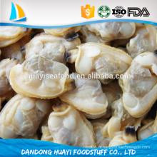 Stock complet de la viande de palourdes à grains courts congelés de haute qualité (palourdes)
