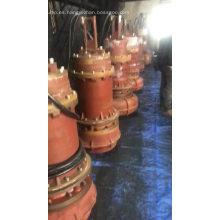 Bombas sumergibles electricas de agua salada serie QW