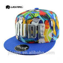 3D-Stickerei billige Snapback HipHop Flat Caps