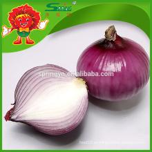 China cebolla roja exportador
