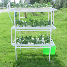 Skyplant Pvc Pipe  Nft Hydroponic System