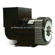 Factory Directly Sale Stamford Type 250kw Alternator Price (JDG314ESS)