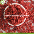 Factory Supply Natural Nutrition Torrfrukt Goji bär