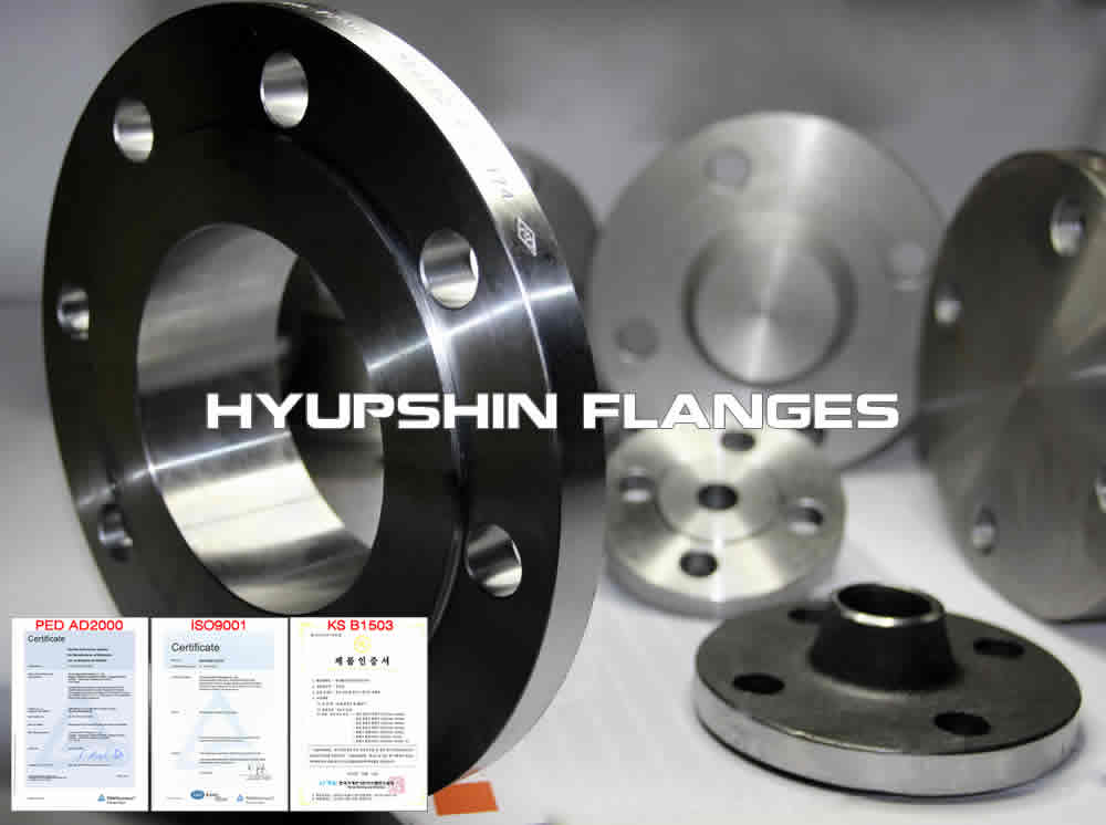 Hyupshin Flanges Weld Neck Forged Flanges