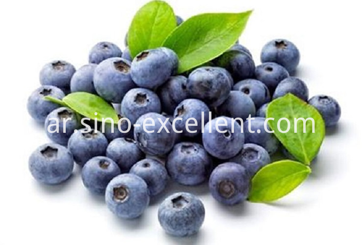 Organic blueberry concentrate juice powder
