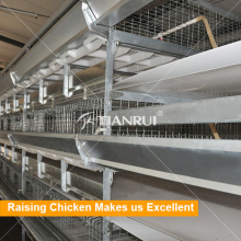 Quality control chicken poultry farm equipment for broiler