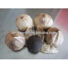 Black Garlic Export To Europe