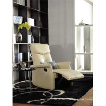 Electric Recliner Sofa USA L&P Mechanism Sofa Down Sofa (C408#)