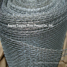 galvanized square wire mesh screen/Galvanised square wire netting/high zinc galvanized square mesh