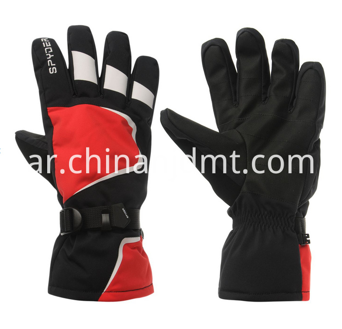 Wild Adventure Ski Gloves