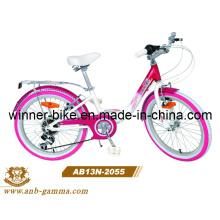20′′alloy Child Bike 6 Speed Girl Bicycle (AB13N-2055)
