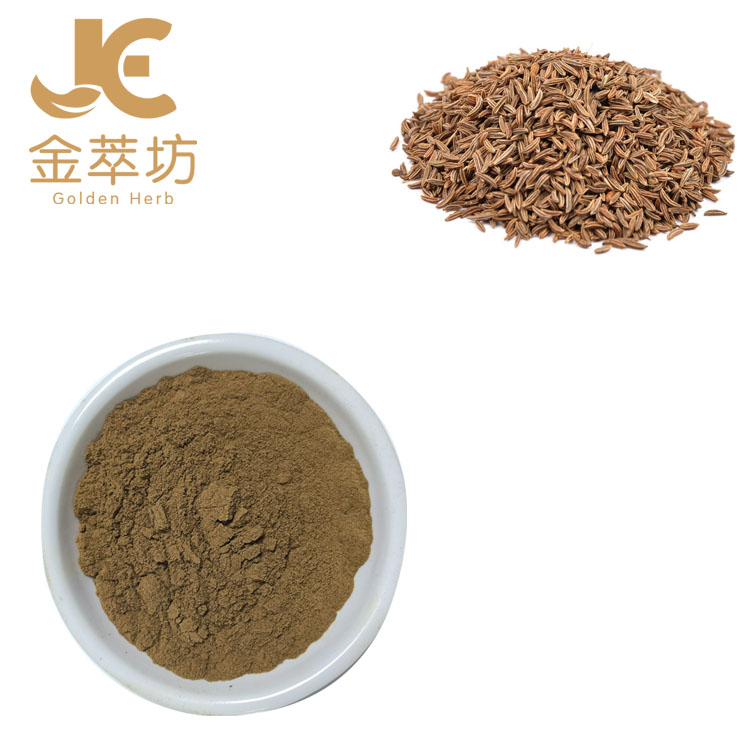 Factory wholesale High quality Chinese herbal medicine Carum carvi plant extract