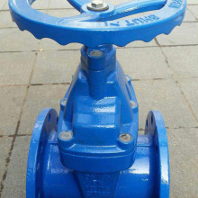 Bright bar iron gate valve