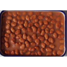 Canned Foul Medammes Broad Beans in Brine