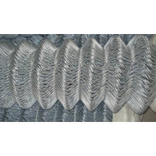 Wire Mesh Fence ---Chain Link Fence