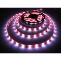 Cadena de luces LED SMD5050 de luz de Navidad Cadena de luces LED