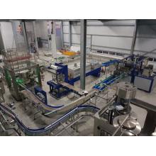 Pure Water Rinsing Filling Sealing Machine