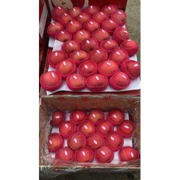Свежие фрукты Красные яблоки FUJI Вкусные яблоки