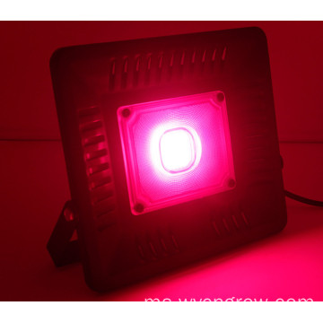 Jualan panas 50w tongkol Led Grow Light