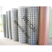 """1/2"""", 3/4"""", 1"""", 2"""", 3"""", 4"""" Welded Mesh Rolls, Panels Are Selling"""