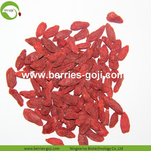 Factory Wholesale Cosmetic Diet New Arrival Wolfberries
