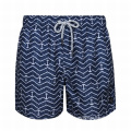 Printed Shorts Swimwear for Mature Men Swim Shorts