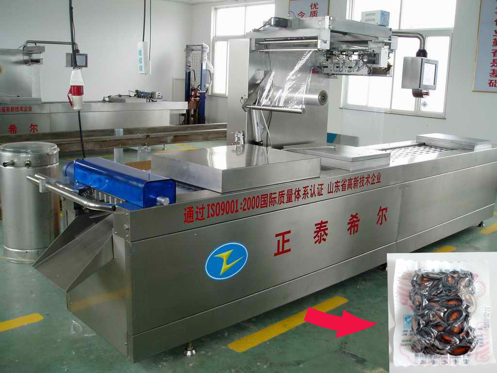 Large scale thermoforming vacuum machine packing for melon seeds