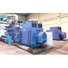 1MW-50MW Diesel Gas Hfo Fuel Power Plant Supplier