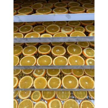 Dry fruits Heat pump air drying
