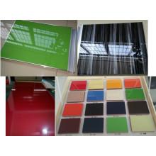 Puertas de gabinete de cocina brillante con los tamaños de los requisitos de los clientes (ZH)