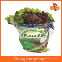 Guangzhou custom fresh vegetable packaging bag/airtight packaging bag/fresh vegetables packaging plastic bag