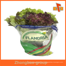 Guangzhou saco de embalagem de legumes frescos personalizado / saco de embalagem hermético / legumes frescos embalagem saco de plástico