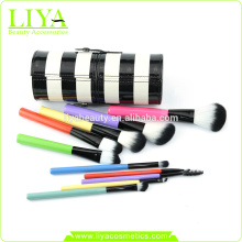 Multi color 10 Stück Nylon Haare Make-up Pinsel set mit Etui
