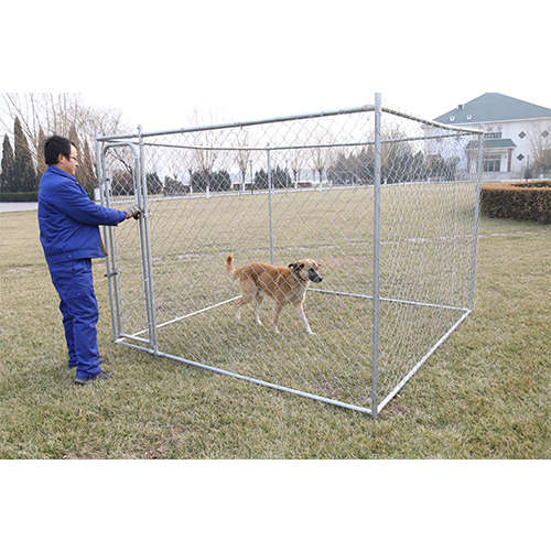 Galvanized Outdoor Chain Link Dog Kennel