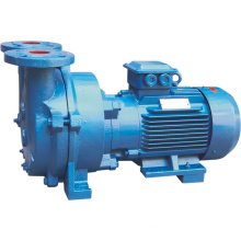 Water Ring Vacuum Pump (2BV)
