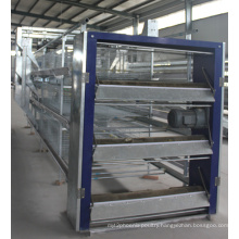 China Agricultural Machinery H Type Broiler Chicken Cage Poutlry Equipment