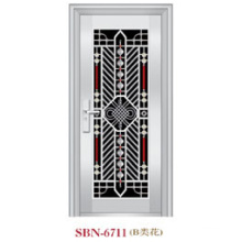 Stainless Steel Door for Outside Sunshine (SBN-6711)