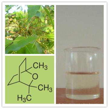 Eucalyptus Oil Acting as Antibacterial Agent