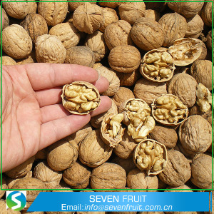 Raw Processing Type and Snack Use Whole Walnuts In Shell