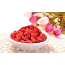 HACCP Certificado de alta calidad goji berry wolfberry superfood