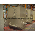 Simens Sychronouse High Voltage Alternator (4501-4 500kw/1500rpm)