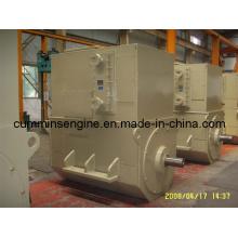 Simens Sychronouse High Voltage Alternator (4501-4 500kw/1500rpm)