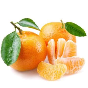 2021 New Crop China Fresh Sweet Citrus Mandarin Orange