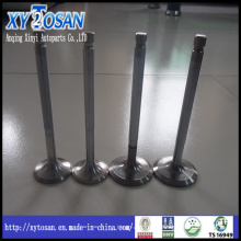 Intake & Exhaust Engine Valve for Hyundai H100/ Santro/ Accent/ Mighty/ Sonata (ALL MODELS)