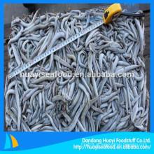 Peixe alimentado congelado lança fornecedor