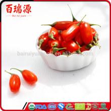Bayas de Goji crudas venta caliente goji baya orgánico secado de goji con muestras gratis
